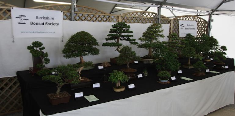 Berkshire Bonsai Society