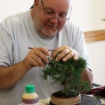 Paul working on Juniper