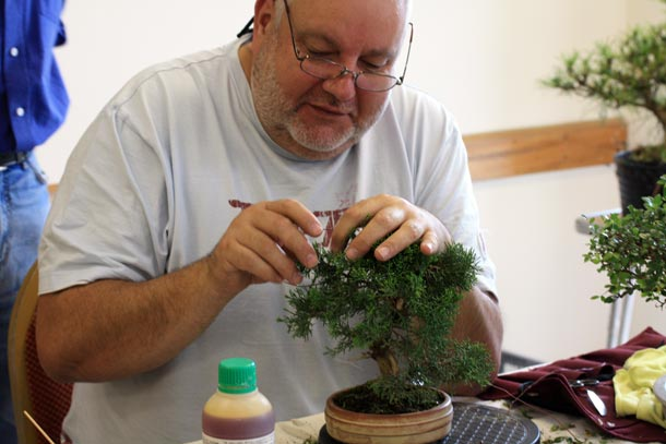 Paul working on Juniper