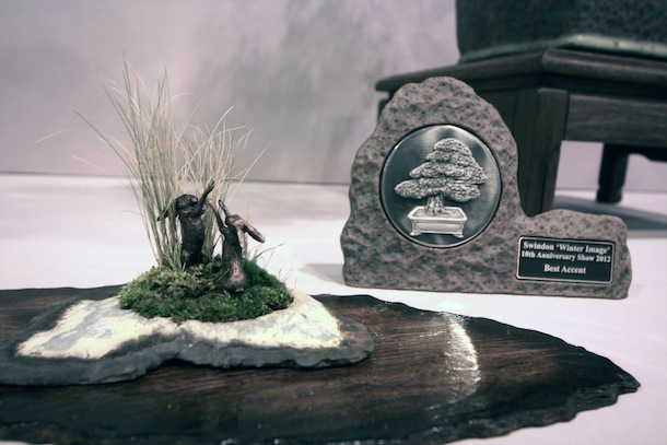Best accent by Ian Warhurst of Wirral Bonsai Society