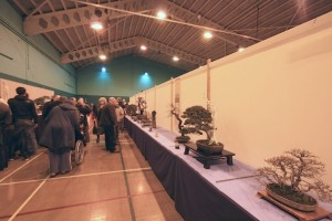 Visitors to our show