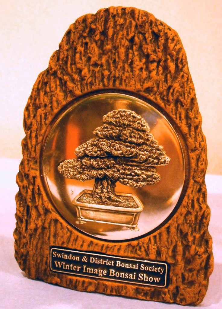 Swindon Winter Image  Show Tree Award