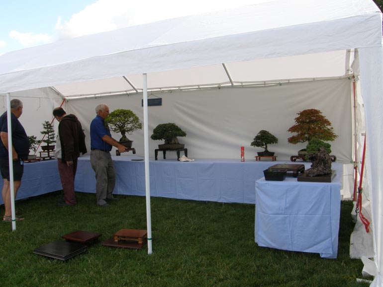 Wanborough Show 2014