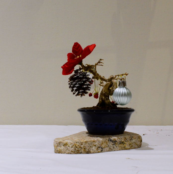 KB Christmas Tree