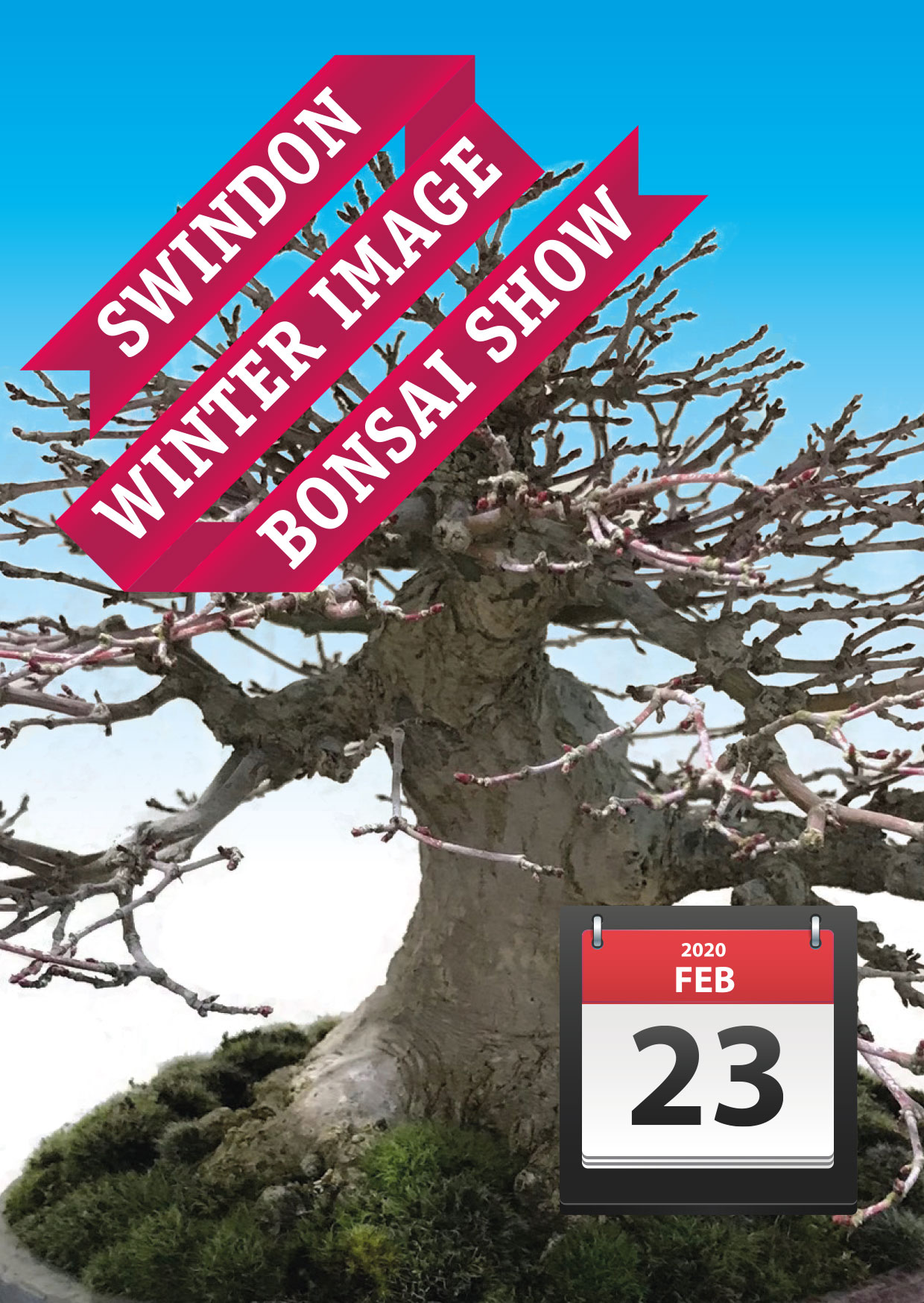 Swindon Bonsai Club Winter Show 23rd Feb 2020
